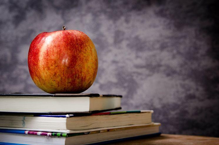 Kijöttek az eredmények: javult a szövegértés az általános iskolásoknál