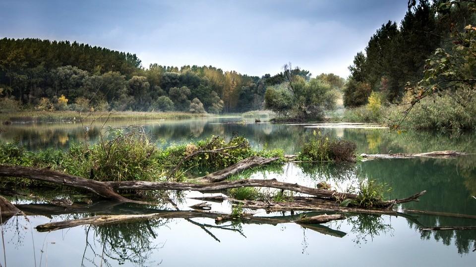 Sokkoló állapotban vannak folyóink