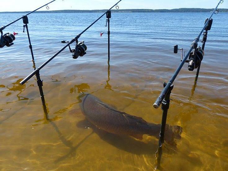 Drágább lett a horgászjegy a Balatonnál