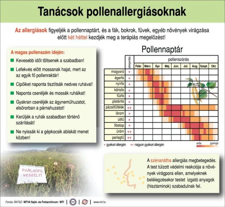 Praktikus tanácsok pollenallergiásoknak - Ezekkel a praktikákkal kevésbé szenved a pollenektől