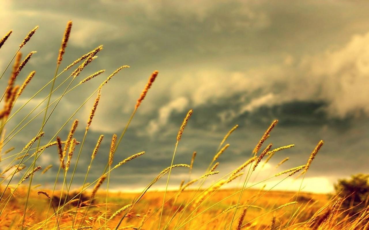 Zápor, zivatar, szél, meleg: mutatjuk, milyen idő lesz hétfőtől