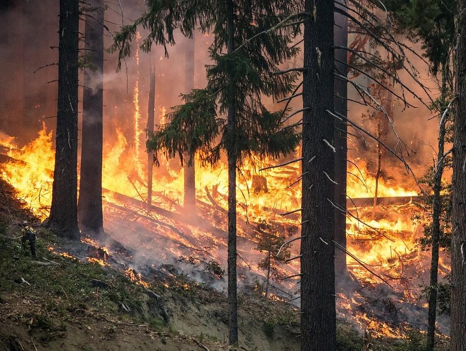 Kalifornia északi vidékein sebesen terjedő tűzvészek pusztítanak