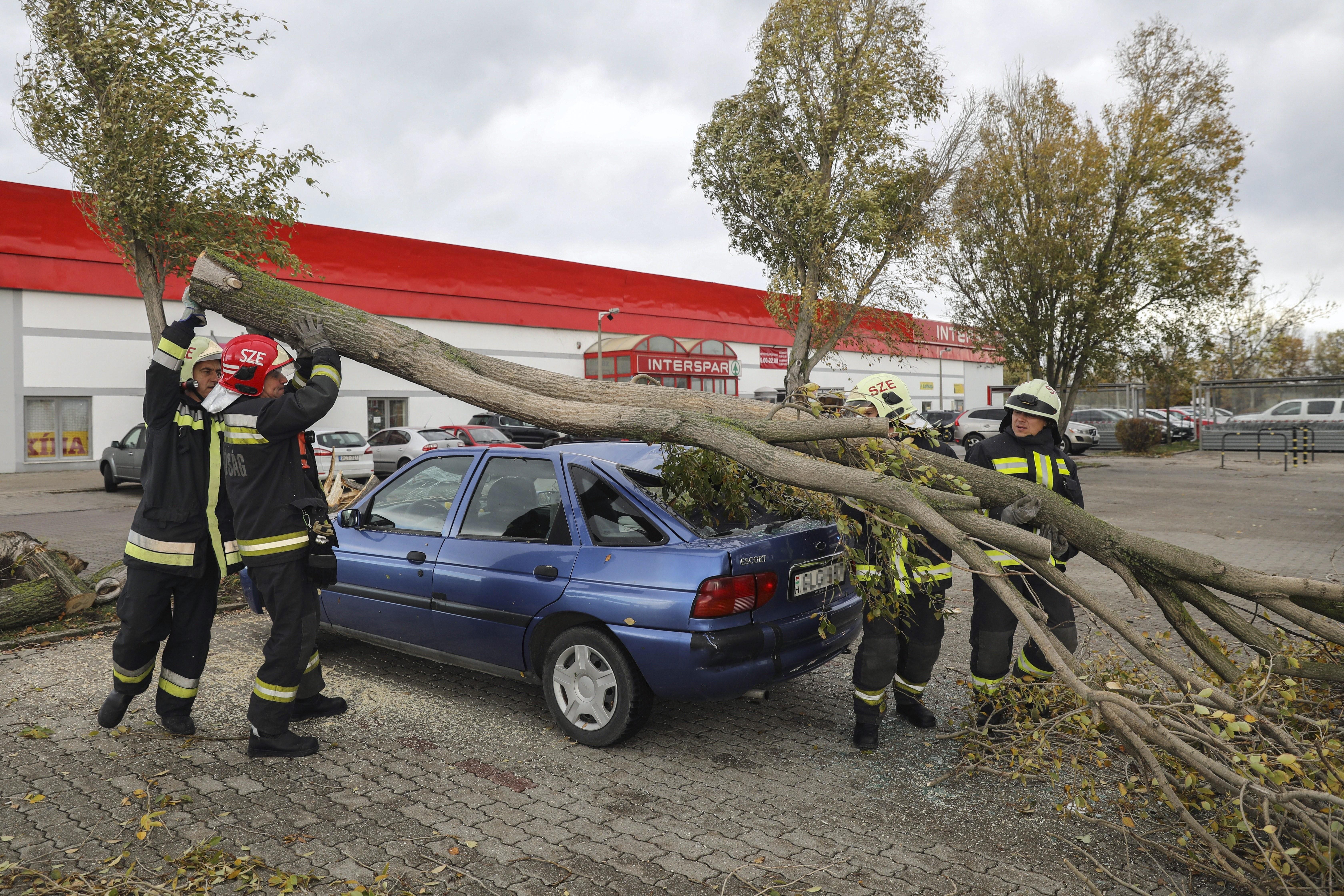 Itt a vihar - parkoló autóra dőlt egy fa (fotó)