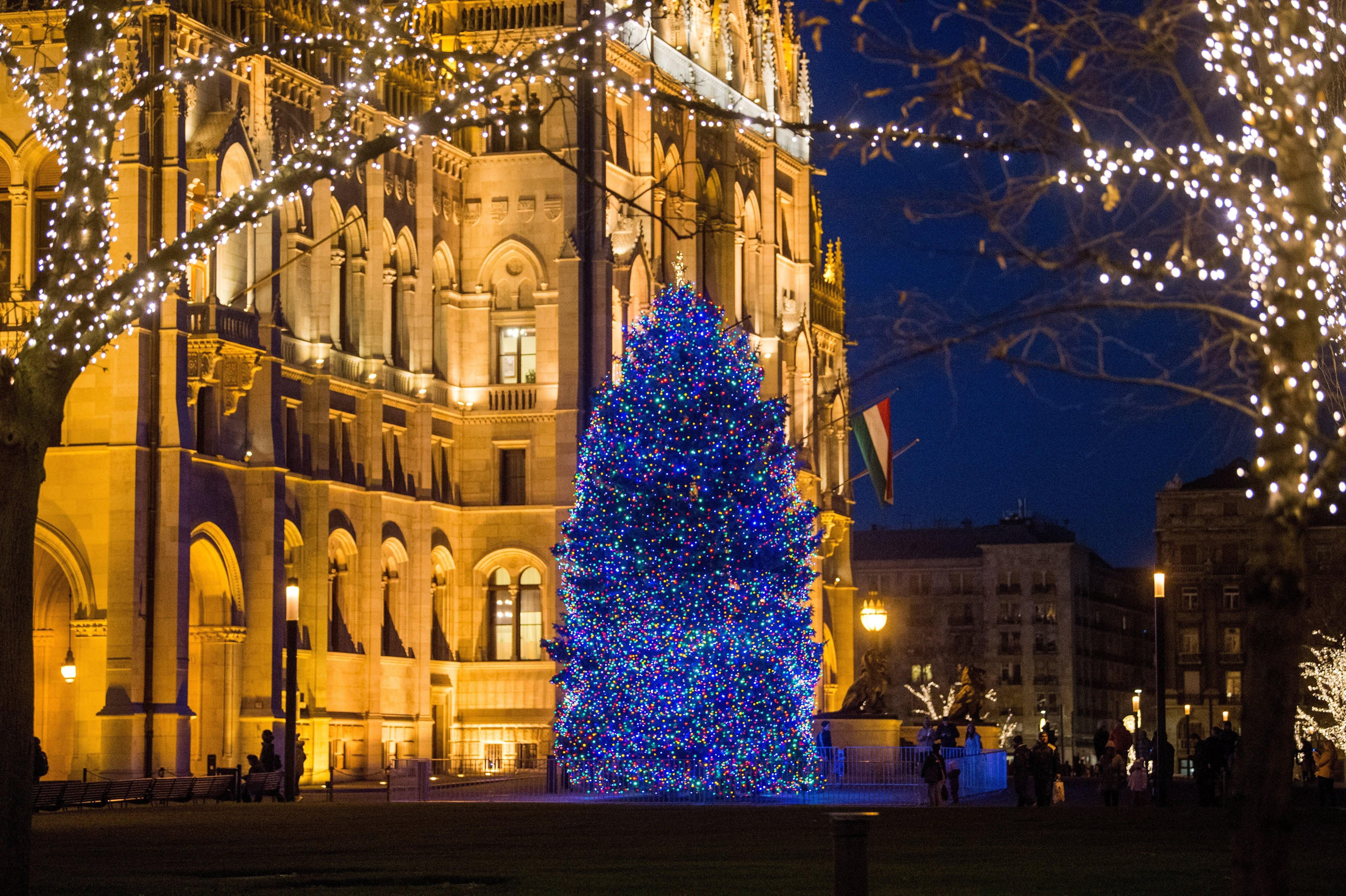 Az ország karácsonyfája az Országház előtt - fotók