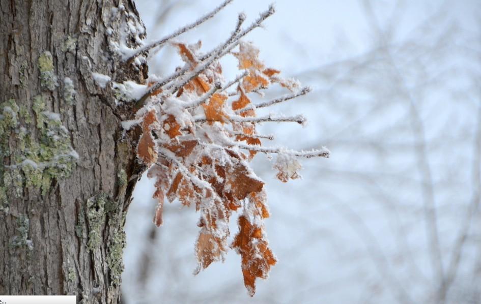 Hideg, téli idő várható