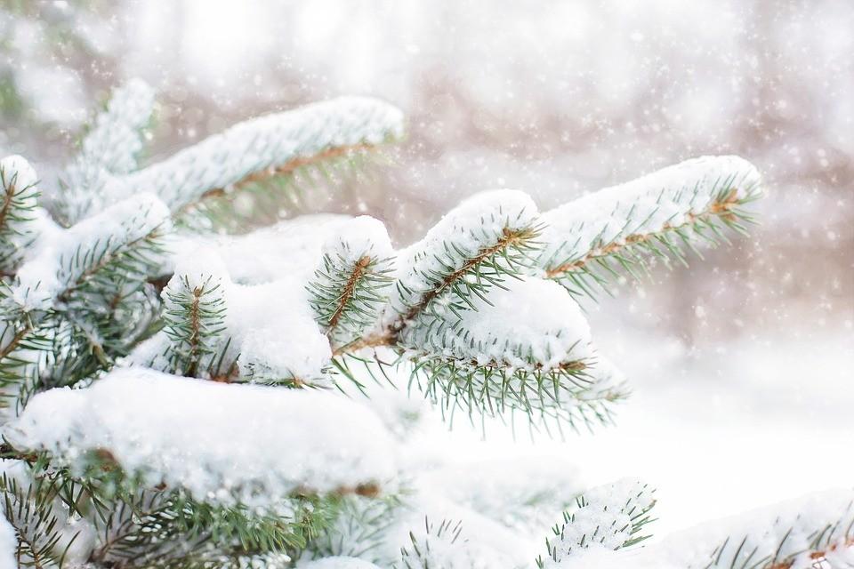 Vajon fehér karácsonyunk lesz?