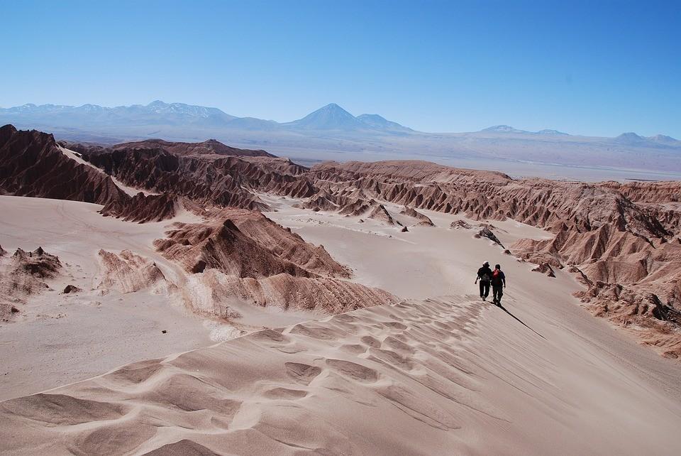 Először sikerült azonosítani állandó lakókat a legszárazabb sivatagban