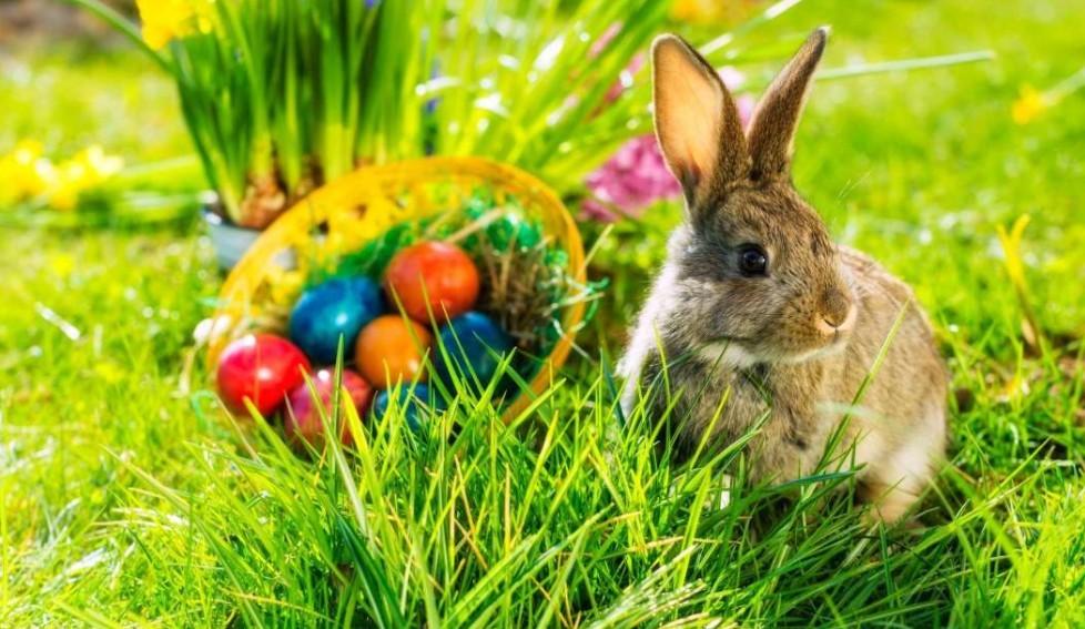 A húsvéti ünnep – minden, amit a húsvéti ünnepekről tudni érdemes