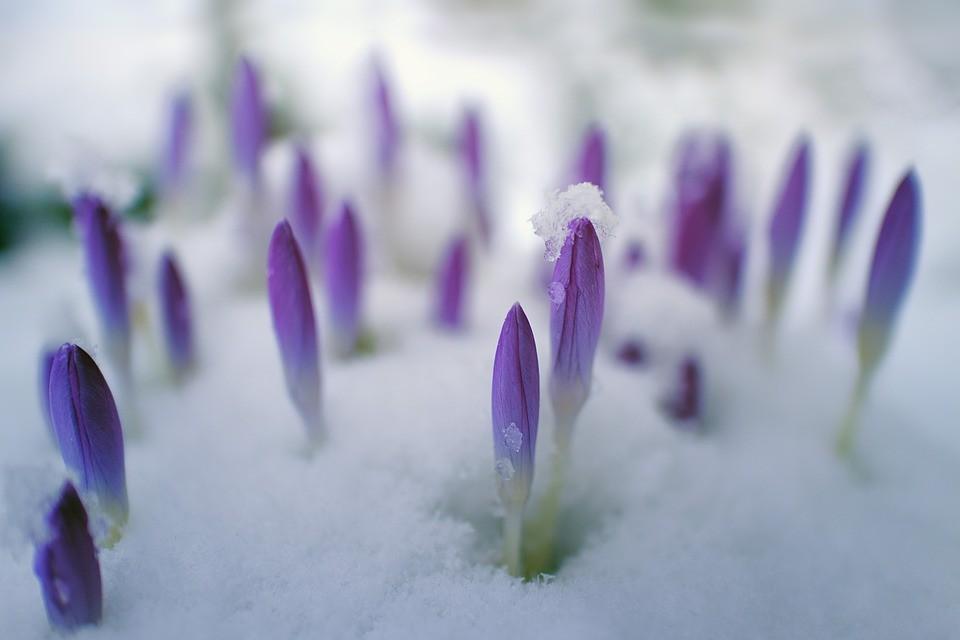Megdőlt a hidegrekord a tavasz első napján