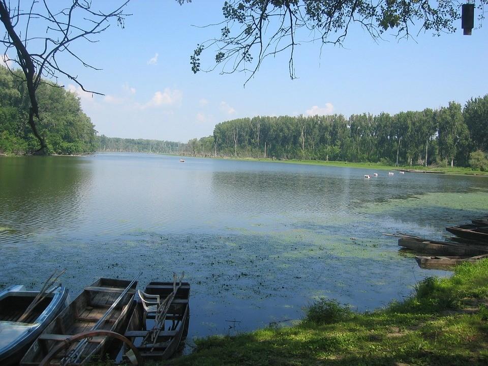 Tisza-tó: Egykori víztározóból lett hazánk legnagyobb mesterséges tava