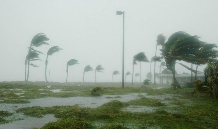 Emelkedett a Florence trópusi vihar halálos áldozatainak száma