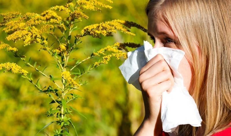 Rossz hír az allergiásoknak - A felmelegedés még ezt is hozhatja