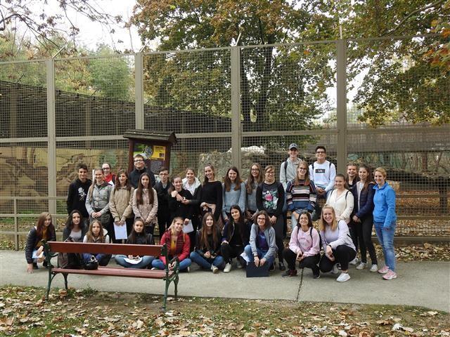 Tehetséggondozó program a Zoo Győrben