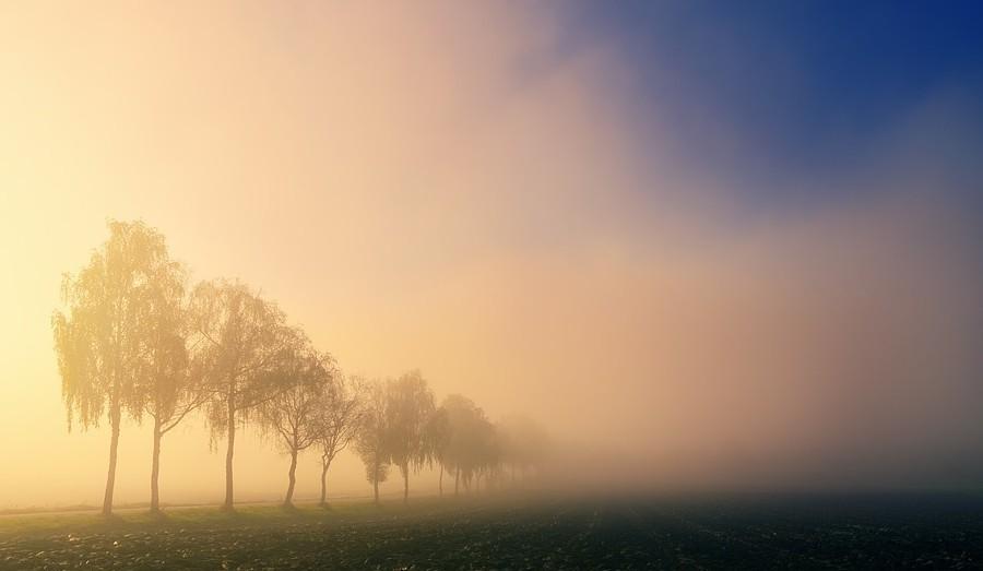 Időjárás-előrejelzés - Jön egy hidegfront és figyelmeztetést is kiadtak a sűrű köd miatt