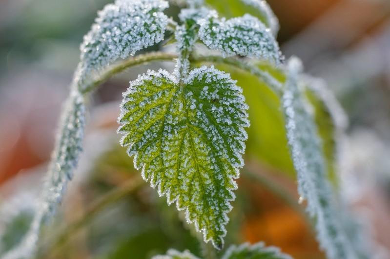 Időjárás-előrejelzés szombatra - Ilyen időjárás várható az első téli napon