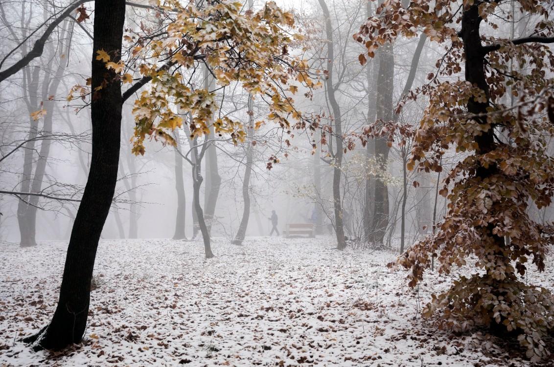 Időjárás-előrejelzés keddre - Az ország egy részén havazás, másik részén eső várható