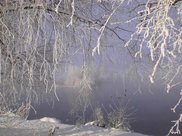 Erzsébet-napi időjárási megfigyelések - Már azt is tudhatjuk, lesz-e hó karácsonykor
