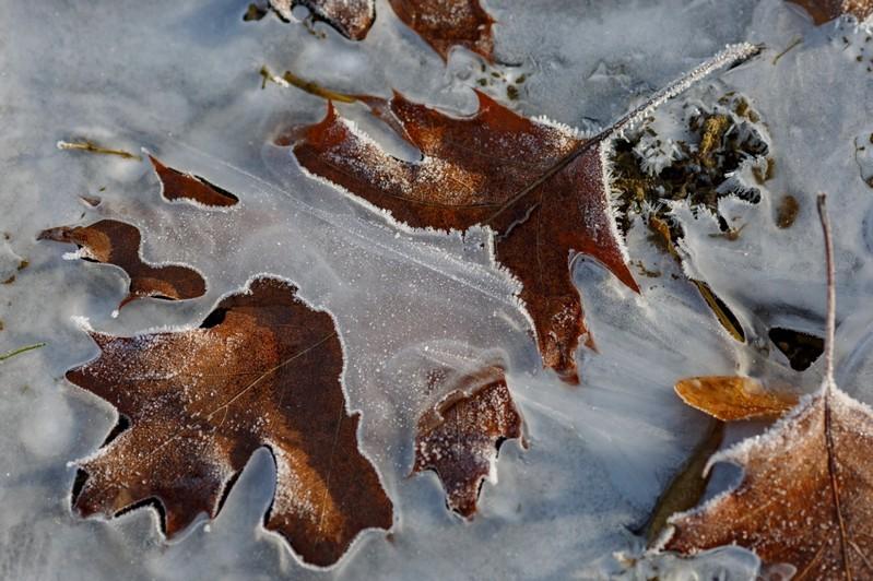 Időjárás - Ilyen hideg volt az utolsó őszi napon