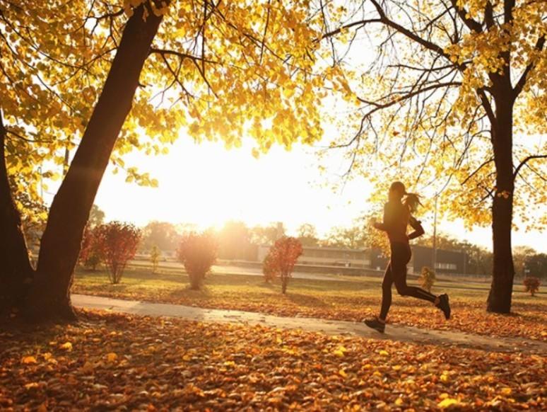 Rekord meleg volt az ősz