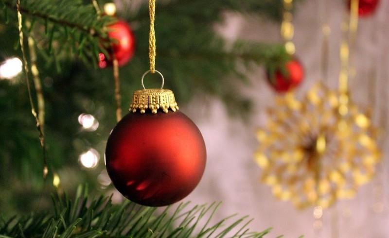 Milyen fenyőfát válasszunk? - Mire figyeljünk a karácsonyfa vásárláskor?