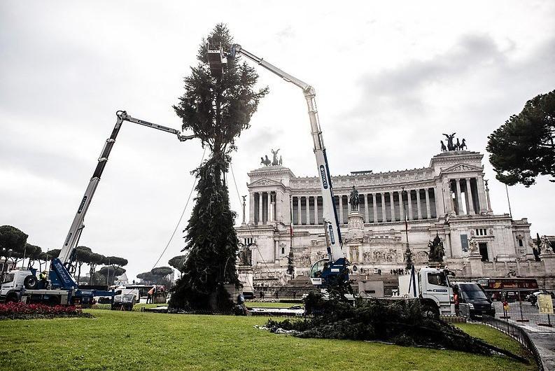 Ágak nélküli karácsonyfát állítottak fel Róma központjában