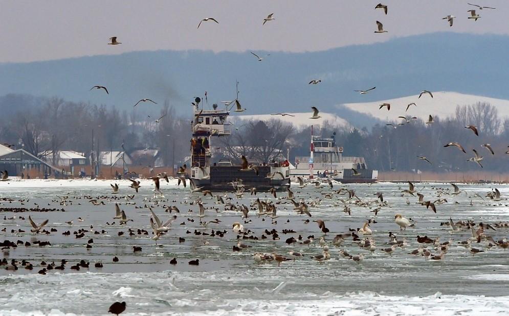 Kiderült, lehet-e korcsolyázni a Balaton jegén