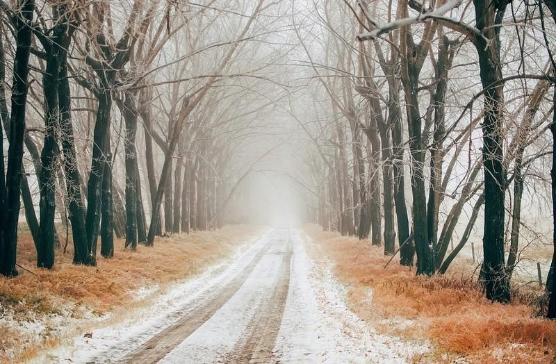 Időjárás-előrejelzés - Sűrű ködre figyelmeztetnek és mutatjuk mikor jön az újabb havazás