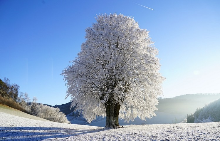 A januári időjárással kapcsolatos megfigyelések és babonák