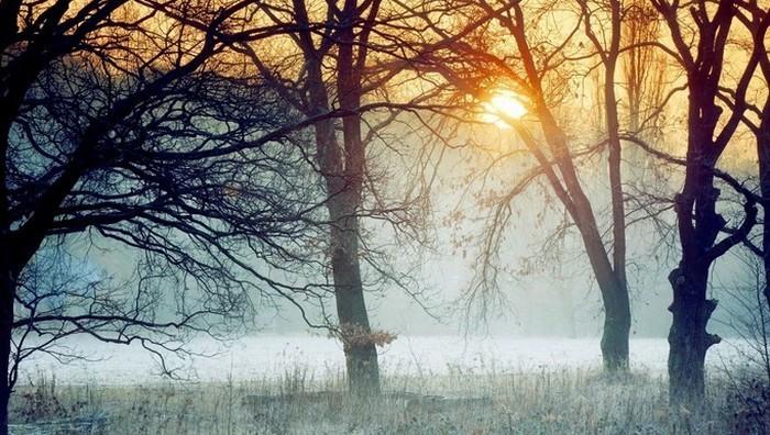 Februári időjárási jóslatok, népi megfigyelések és világnapok