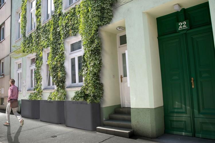 Ingyenes zöldhomlokzattal készül Bécs a nyári hőségre