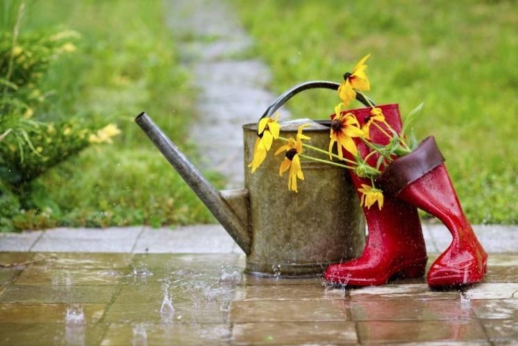 Időjárás vasárnap - Az ország egyik felén borús, másik felén esős idő várható