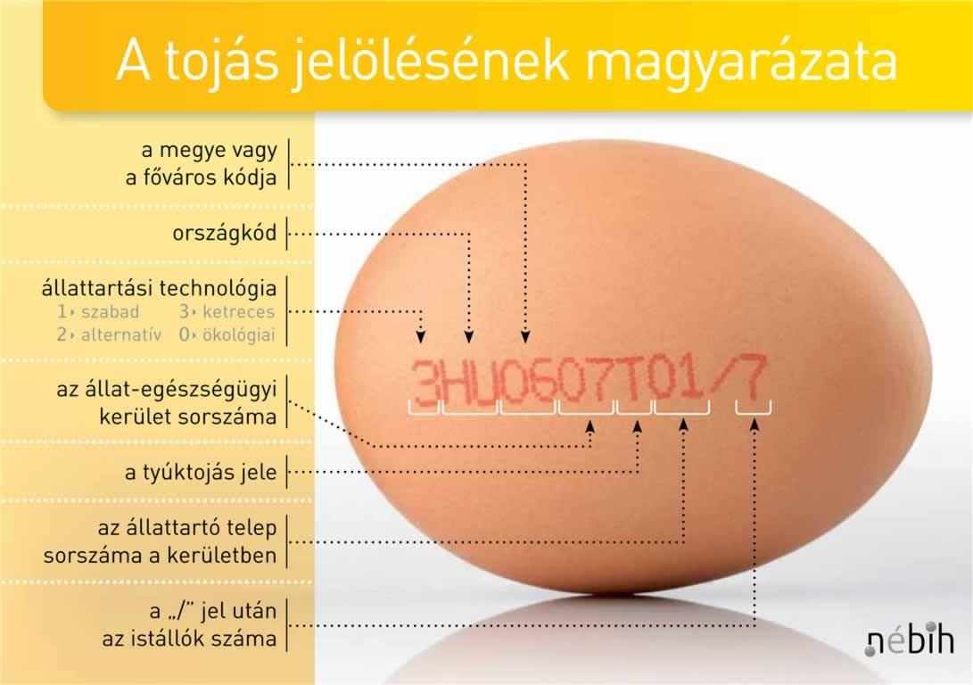 Ezt mindenképpen ellenőrizze, ha tojást vesz húsvétra
