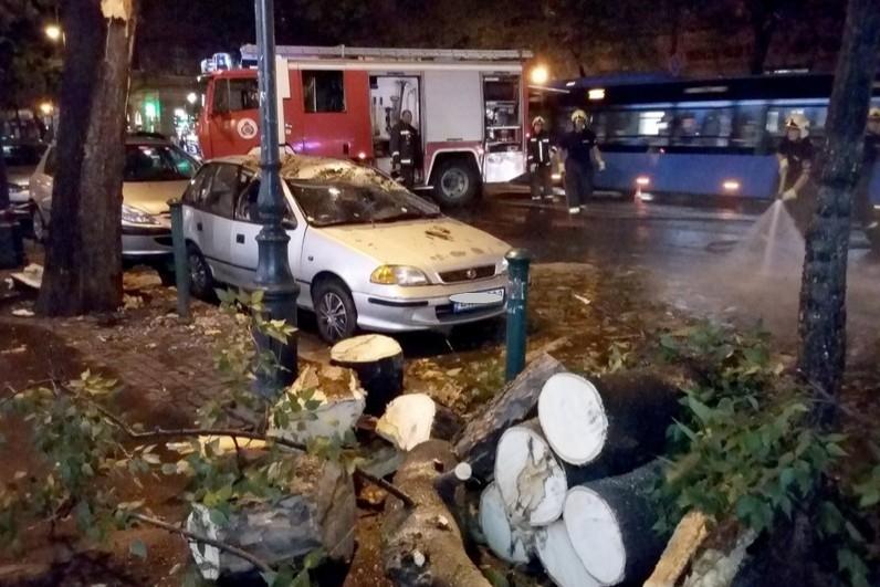 Fákat döntött ki, vezetékeket szakított le az éjszakai vihar