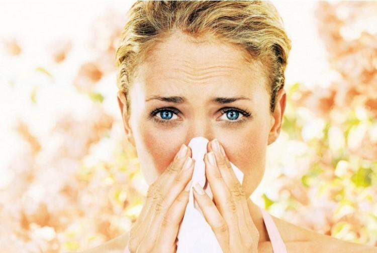 Extrém magas lehet a parlagfű pollenkoncentrációja a következő napokban