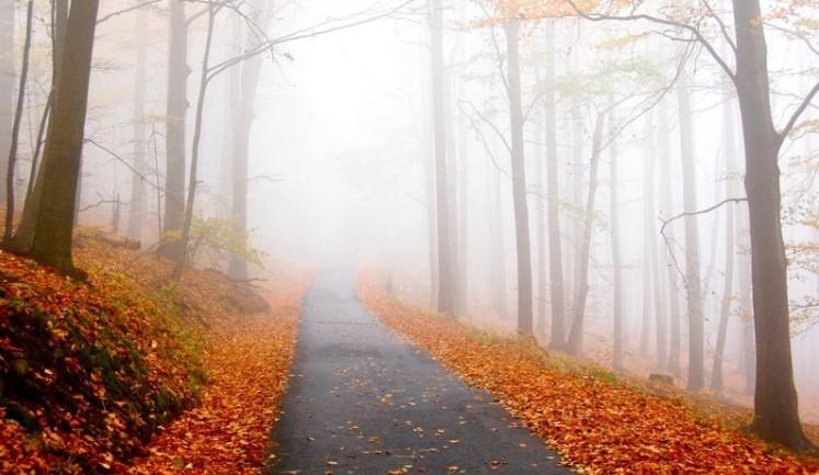 Friss időjárás-előrejelzés november utolsó hetére, november 25-től vasárnapig