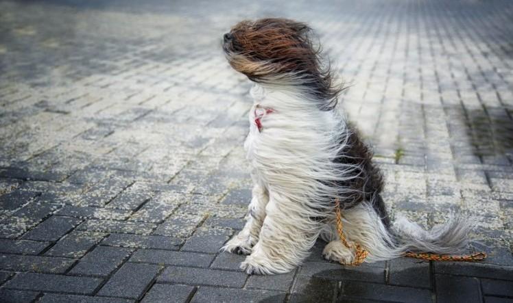 Friss időjárás-előrejelzés Judit napjára, keddre - Hidegfront érkezik, ami változást hoz