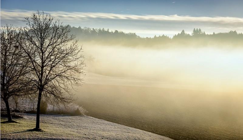Sűrű köd veszélyére figyelmeztet az OMSZ - Itt van a szombati előrejelzés