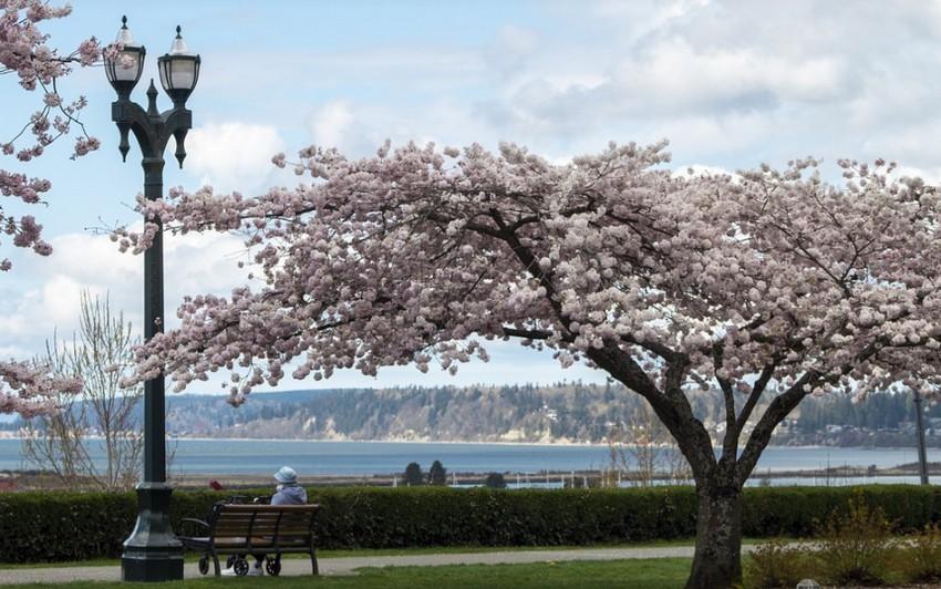 Közeleg a tavasz - Friss OMSZ előrejelzés április 9-11-ig
