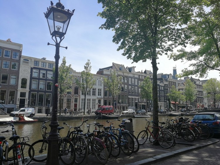 Virággal védik az amszterdami hidakat az odaláncolt bicikliktől - Fotó: alon.hu