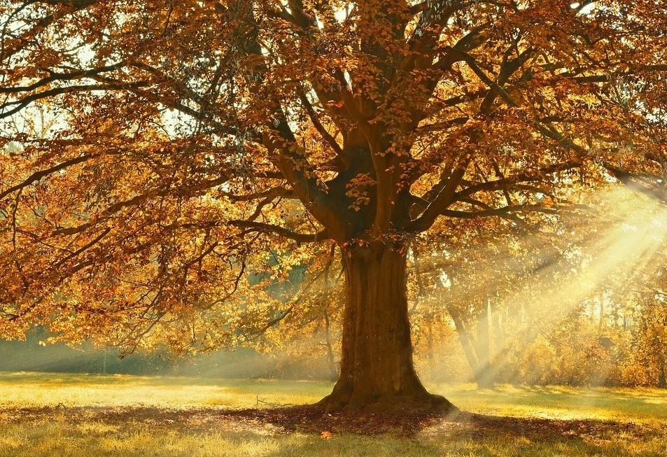 Meteorológiai előrejelzés keddre - Az ország egyik fele örülhet
