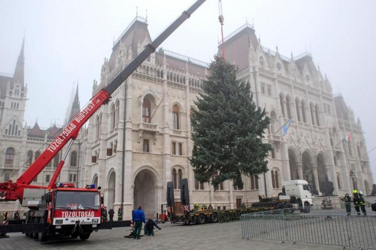 Advent - Felállították az ország karácsonyfáját az Országház előtt