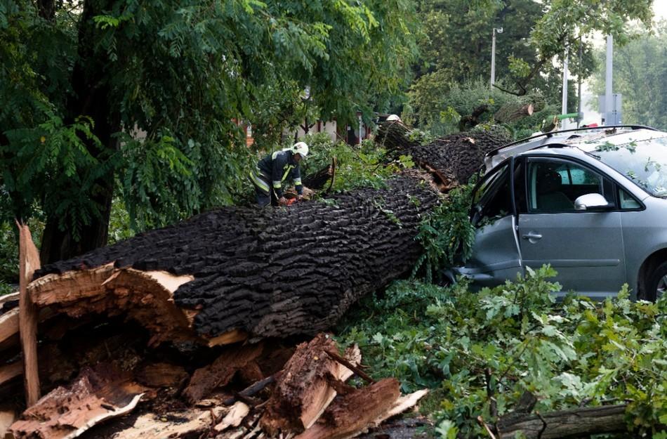 Méretes fák épületre, autókra dőltek a viharban Nyíregyházán (Fotók)